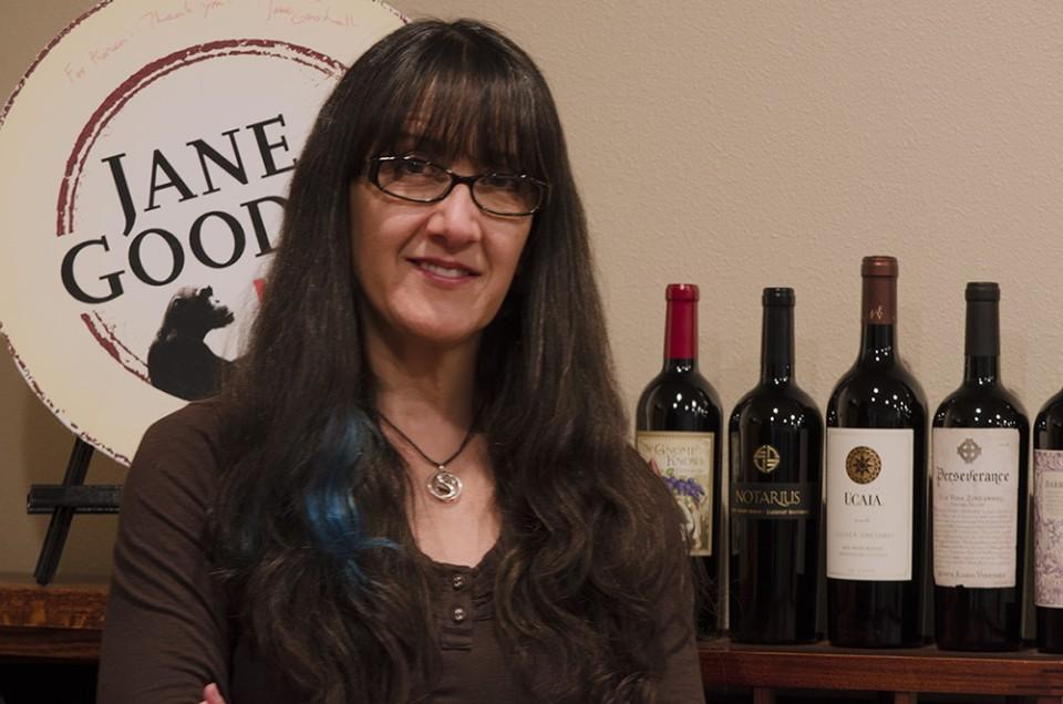 Interview with Karen Adair, Owner of DG Creative Branding